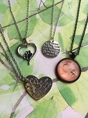Pet Dog Cat Memorial Necklace Paw Print Rainbow Bridge Loving Memory Infinity