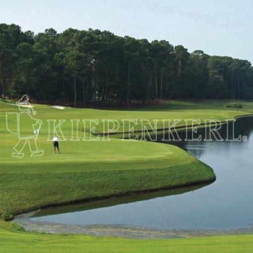 Kiepenkerl Golfrasen Masters10kg Nachsaat Rasen