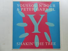 "MAXI 12"" YOUSSOU N DOUR PETER GABRIEL Shakin the tree 80464"