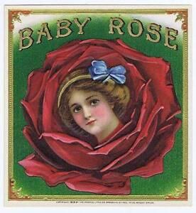 Baby Rose- Original Externe Cigare Boîte Label- Girl- Fleur siU6IKod-09161151-325763092
