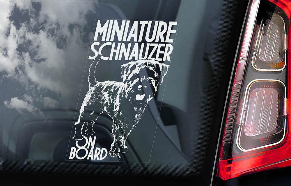 V02 Pomeranian on Board Car Window Sticker Pom Dog Zwergspitz Sign Decal
