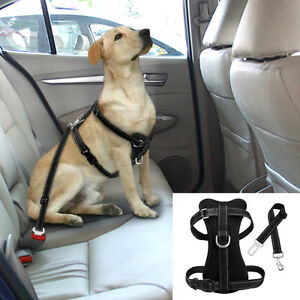 Dog Car Harness >> Details About Reflective Pet Dog Car Harness And Auto Seat Belt Clip Leash S M L Xl Black