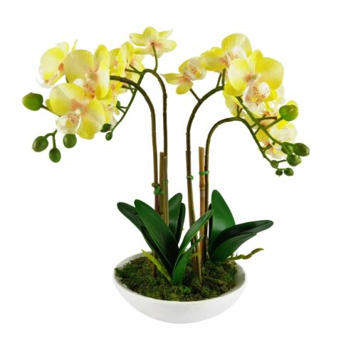 PREMIUM QUALITY HOME DECOR GIFT Artificial Pre-Potted Real Touch Orchid Plants