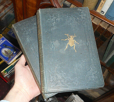 Kirby & Spence An Introduction to Entomology - Natural History of Insects 1843