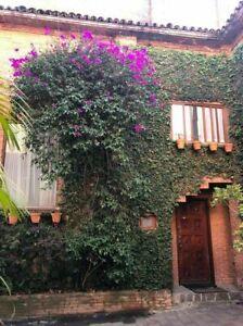 Casa en Venta en Condominio Las Aguilas parte baja