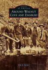 Around Walnut Cove and Danbury by Kyle A Berrier (Paperback / softback, 2014)