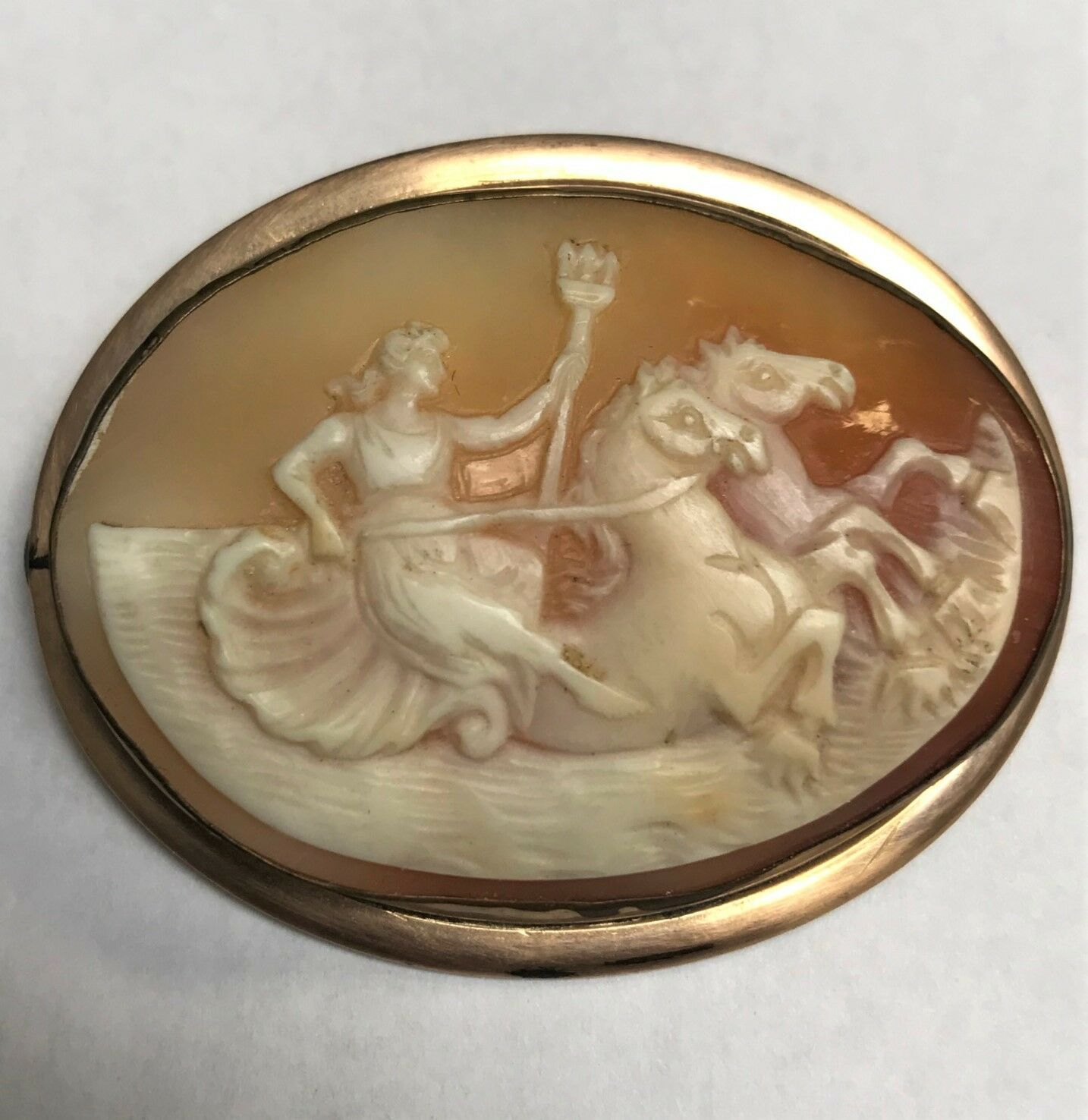 Cameo Female Neptune in Ocean w  Horses Helmet Shell Pin  Brooch