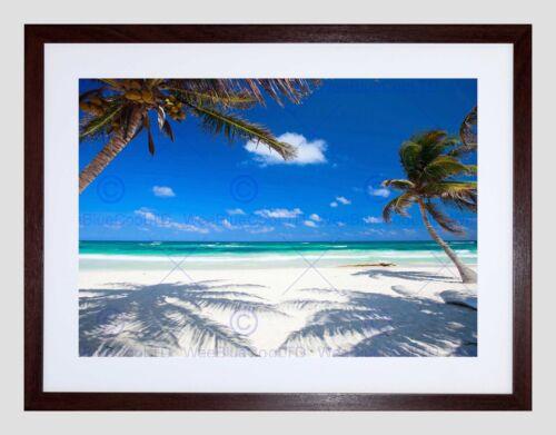 COCONUT PALMS AT DESOLATE BEACH CARIBBEAN PARADISE FRAMED ART PRINT B12X9392