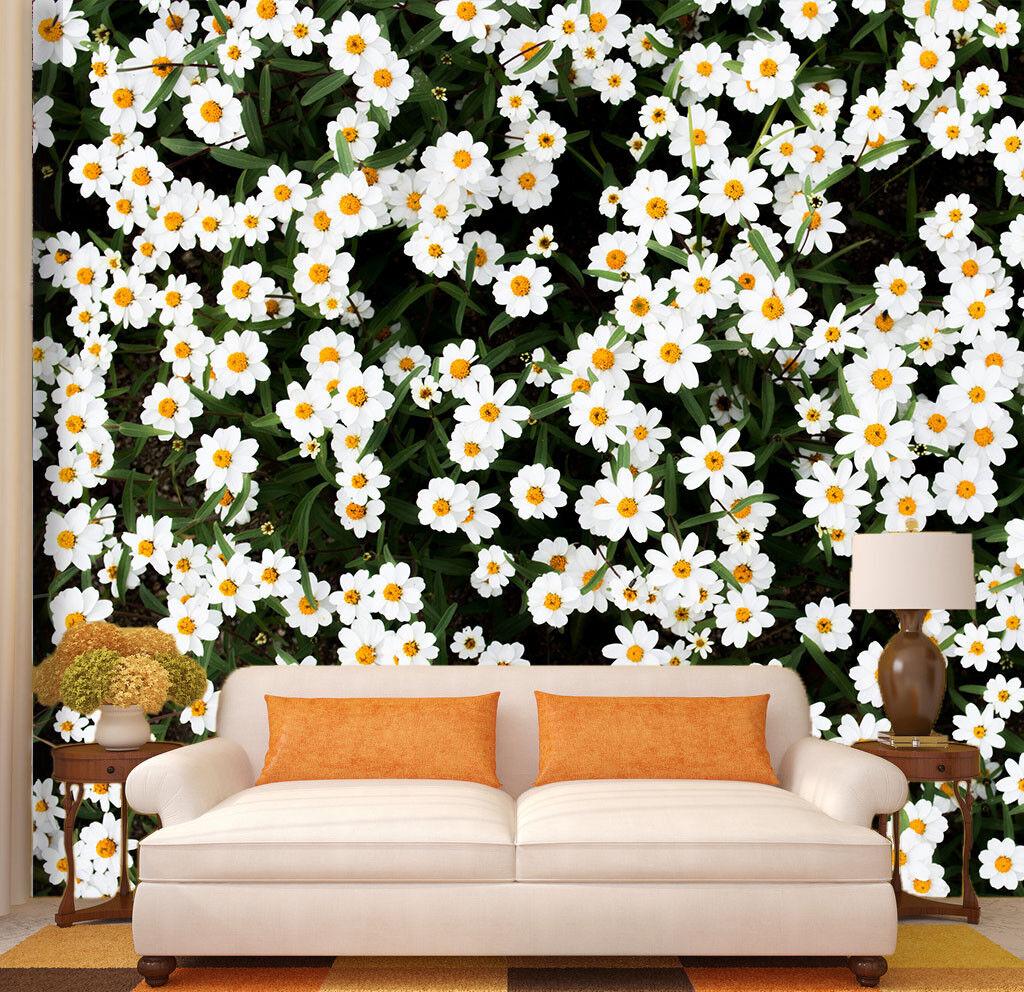3D Weiße Wildblumen 558 Tapete Tapeten Mauer Foto Familie Tapete Wandgemälde DE