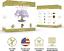 thumbnail 2 - Nature's Blossom Bonsai Tree Kit - Grow 4 Types of Bonsai Trees From Seed. Indoo