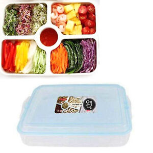 Details about Easy and Free Food Storage Container 5 Divided Trays for Rice  Paper Wrap