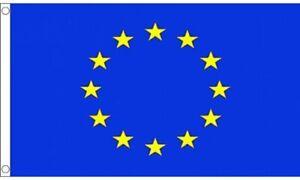 5-Pieds-X-3ft-Ue-Europeen-Gb-Referendum-Reflex-Bleu-Vote-Drapeau