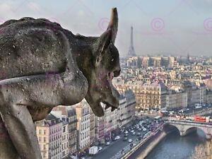Photography-Cityscape-Paris-France-Gargoyle-Grotesque-Canvas-Art-Print