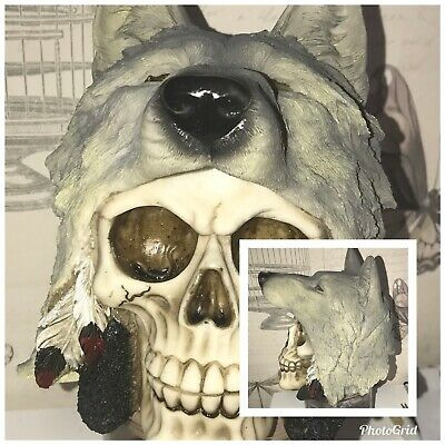 latex mould for making this WOLF STYLE SKULL