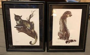 Pair-Framed-Puma-And-Cheetah-Prints-Artist-Kushner-Safari-Animal