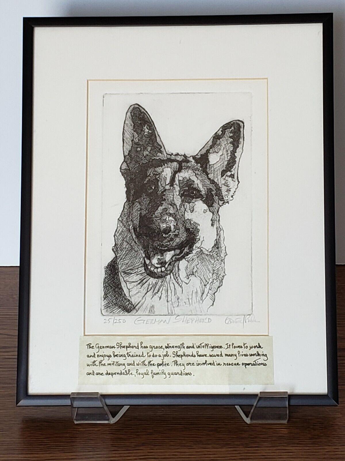 German Shepherd fine art Giclee print from hand drawn pastel original