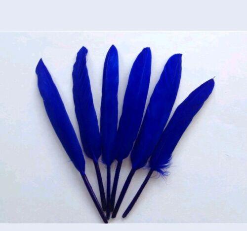 "10 Piezas Plumas De Ganso Sombrerería /& Crafts 3-6/"" Azul Real"
