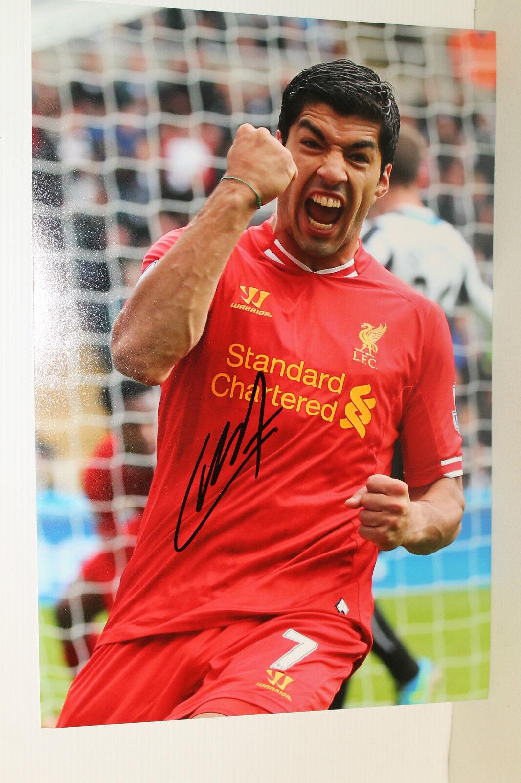 Luis Suarez mano firmado 8x12 fotografía sin enmarcar + foto prueba & C.o.a