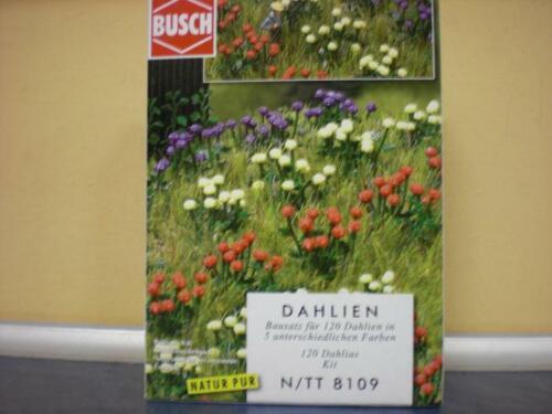 Busch 120 Dahlien