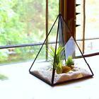 Géométrique Plante Terrarium Suspendu Verre Vase Pot Stand Micro Paysage Décor