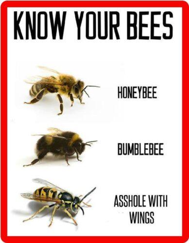 Locker Honey Bees Bee Keeper Refrigerator Tool Box  Magnet