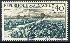 TIMBRE-DE-MADAGASCAR-N-79-OBLITERE-CHAMP-DE-TABAC