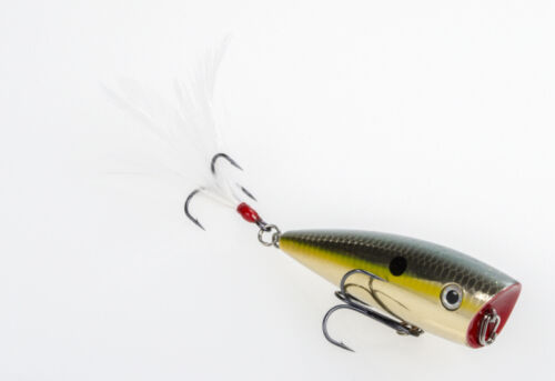 "Strike King Kvd Splash Topwater Bait 3/"" Bass Fishing Lure Bait"