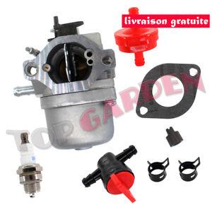 Carburateur avec Filtre pour Briggs & Stratton WALBRO LMT 5-4993 pièces moteur