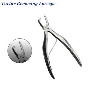 Tartaro Rimuovere Forceps-Extracting Forcipi Dentistico Veterinario Strumento