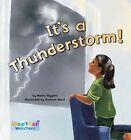 It's a Thunderstorm! by Nadia Higgins (Hardback, 2010)