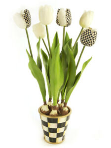 Potted Tulips Cream W Courtly Check