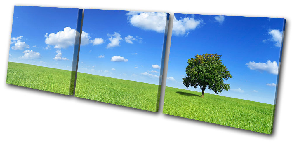 Landscapes Field Tree TREBLE Leinwand Wand Kunst Bild drucken