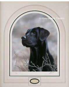 John-Silver-CLASSIC-BREED-BLACK-LABRADOR-RETRIEVER-Gun-Dog-Head-Study-Art