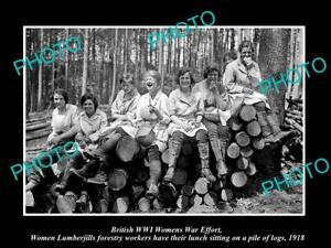OLD-POSTCARD-SIZE-PHOTO-OF-BRITISH-WWI-WOMENS-WAR-EFFORT-LUMBERJILL-LOGGERS