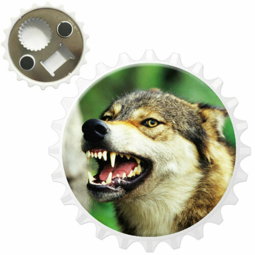 Wolf Snarling In Forest Bottle Opener Fridge Magnet