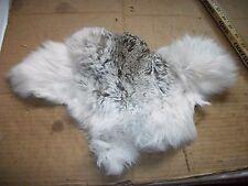 NICE tanned JACK RABBIT FUR pelt skin NATIVE CRAFTS supplies bag purse pouch R3