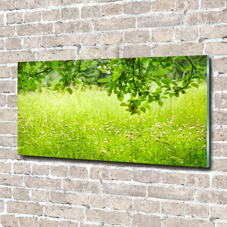 Acrylglas-Bild Wandbilder Druck 140x70 Deko Landschaften Grüne Wiese