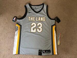 detailing b82b1 e878d Nike Lebron James City Series Edition The Land Swingman ...