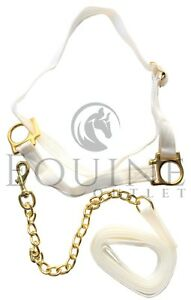 Adjustable-Welsh-Show-Halter-Headcollar-with-Chain-Lead-Pony-amp-Cob