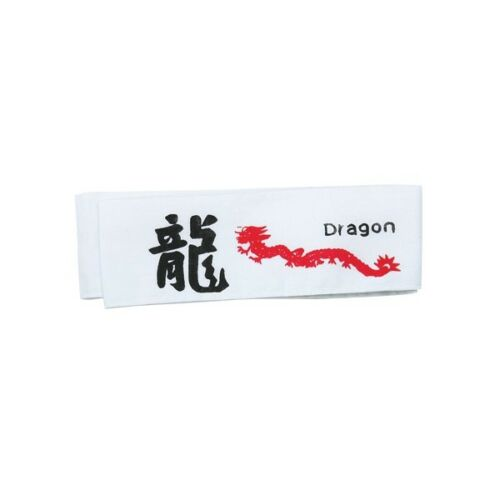 Dragon Martial Arts Headband 847