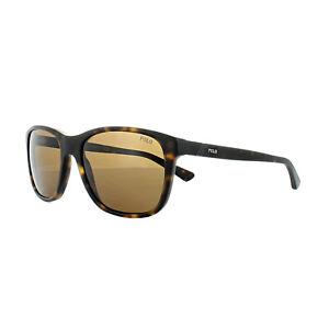 000bbefb3 Polo Ralph Lauren Sunglasses 4085 518273 Matt Dark Havana Dark Brown ...