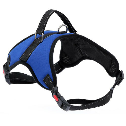 Leash Cat Pet Dog Puppy Harness Dog Soft Adjustable Harness Vest Dog Chest Strap