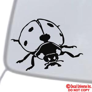 Amazon Com Ak Wall Art Ladybug Cute Styling Vinyl Sticker Car Phone Helmet Select Size Home Kitchen