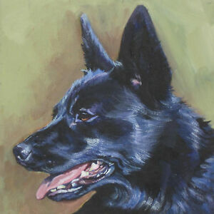Black Norwegian Buhund Dog Art Portrait Canvas Print Of Lashepard Painting 8x8 Ebay