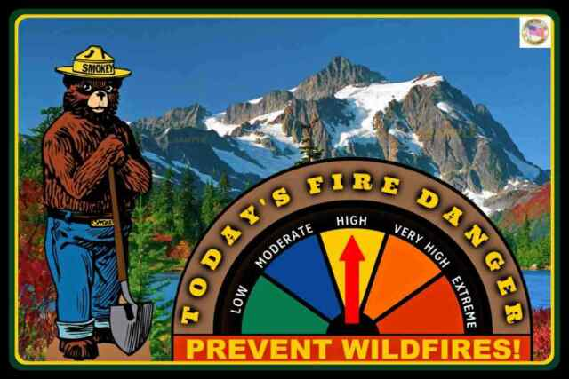 """SMOKEY BEAR FIRE DANGER SIGN GAUGE ADJUSTS! 8""""x12"""" METAL FOREST SERVICE ONLY YOU"""