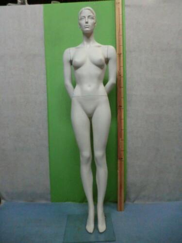 Mannequin Mannequin Doll Fashion Doll Female 6687