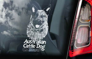 Australiano-Ganado-Perro-Coche-Ventana-Pegatina-Cattledog-Acd-Placa-Signo