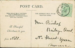 Mr-Bishop-Baileys-Reed-nr-Hurst-Green-Sussex-1905-039-Nell-039-JD607