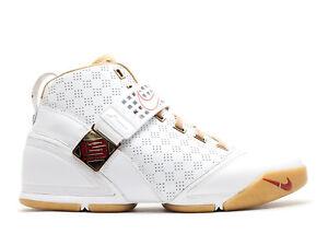 cb2d0fc027cc Nike Zoom LeBron 5 V White Gold Akron Vision Size 10. 317253-171 ...