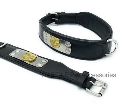 variations to choose Dog collar padded with leather